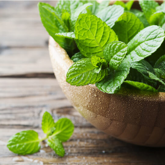 mint for smoothies